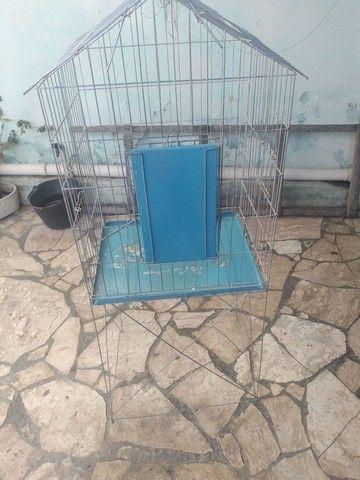 Viveiro para calopsita e papagaio  - Foto 3