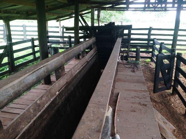 Fazenda 950 ha Rosário Oeste MT - Foto 5