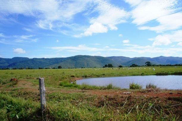 Fazenda 1750 ha N.S. Livramento MT - Foto 6