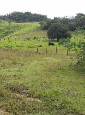 Saquarema - Terreno Madressilva - Rio Seco - 10.139m2 Próximo Km 64 Amaral Peixoto