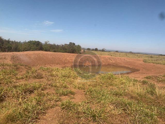 Fazenda 700 ha região do manso - Foto 17