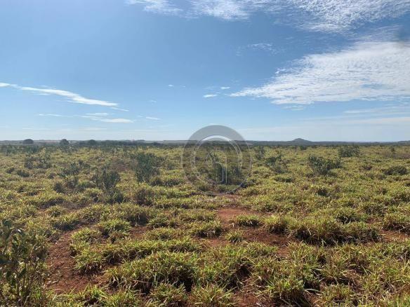 Fazenda 700 ha região do manso - Foto 18