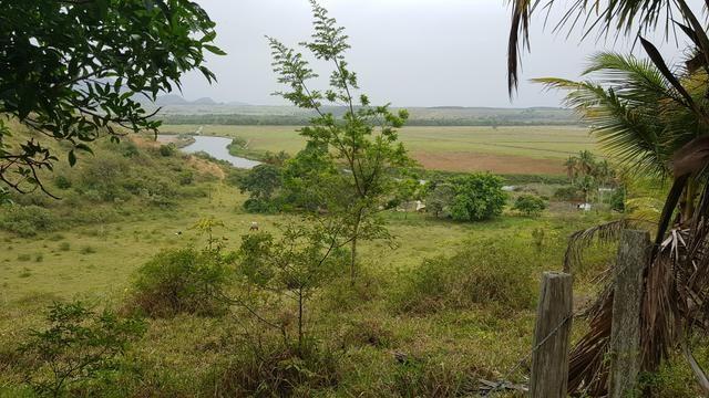 Vendo fazenda em Nova Almeida - Foto 19