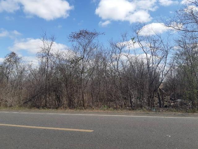 "Vendo Terreno Rural na localidade ""Tapera"" no município de Batalha"