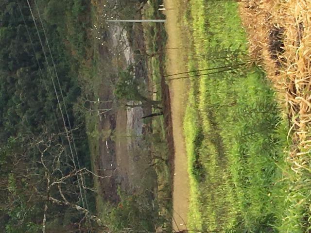GE Compre agora seu terreno 500m2 em mariporã para o final do ano 10.000 - Foto 4