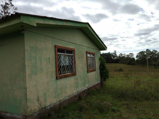 Velleda oferece sitio de 2 ha escriturado com casa e galpão, 1 km da RS040 - Foto 8
