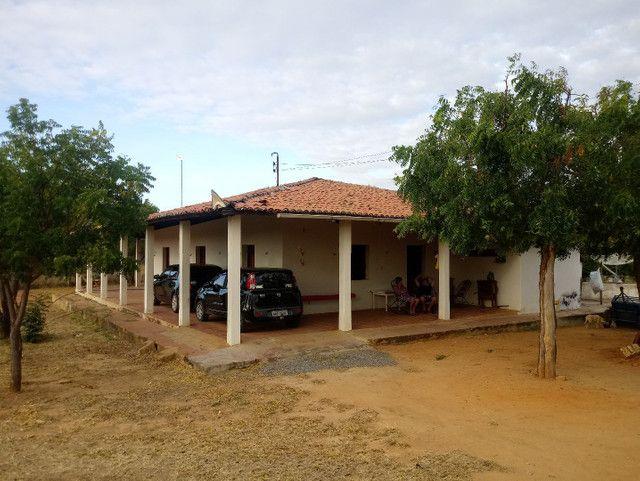 Fazenda em Iracema-CE - Foto 3