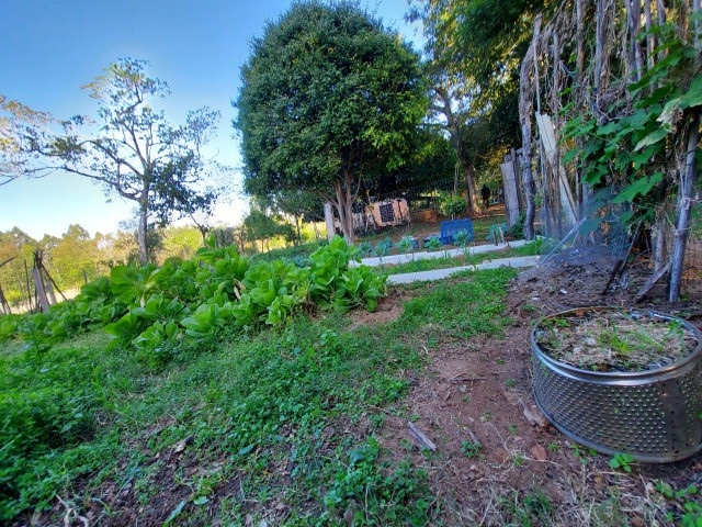 Velleda oferece belíssimo sítio 1 hectare todo arborizado, ideal para lazer - Foto 20