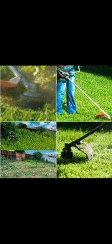 Serviços de jardinagem e pulverização - Foto 2