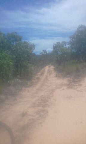 Fazenda Sabiá Dourado - Lizarda/TO - Lavoura e Pecuária - Foto 6