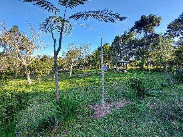 Velleda oferece belíssimo sítio 1 hectare todo arborizado, ideal para lazer - Foto 17