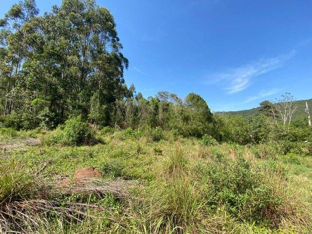 Sitio de 1 hectare em Padilha, barbada do dia - Foto 7