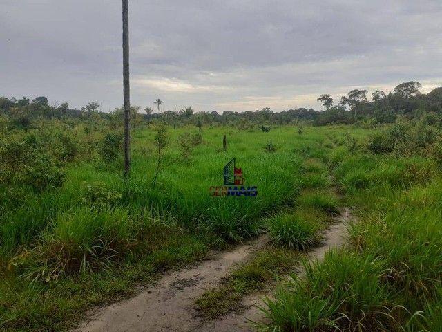 Sítio à venda, por R$ 400.000 - Área Rural de Porto Velho - Porto Velho/RO - Foto 8