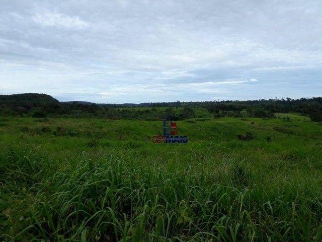 Fazenda à venda por R$ 9.234.000,00 - Zona Rural - Alta Floresta D'Oeste/RO - Foto 4