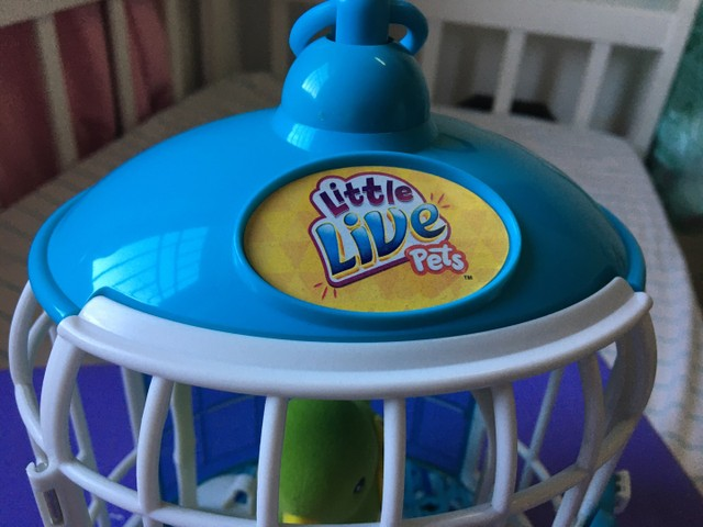 Gaiola Litlle Live pets - Foto 3