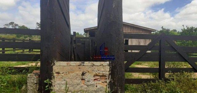 Sítio à venda por R$ 855.000 - Zona Rural - Vale do Anari/RO - Foto 7
