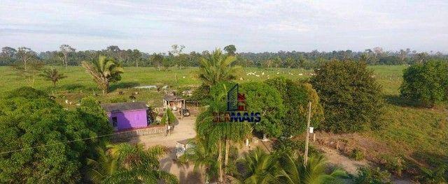 Sítio à venda por R$ 1.680.000 - Área Rural de Porto Velho - Porto Velho/RO - Foto 3