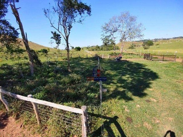 Sítio à venda, por R$ 2.150.000 - Centro - Alta Floresta D'Oeste/RO - Foto 9