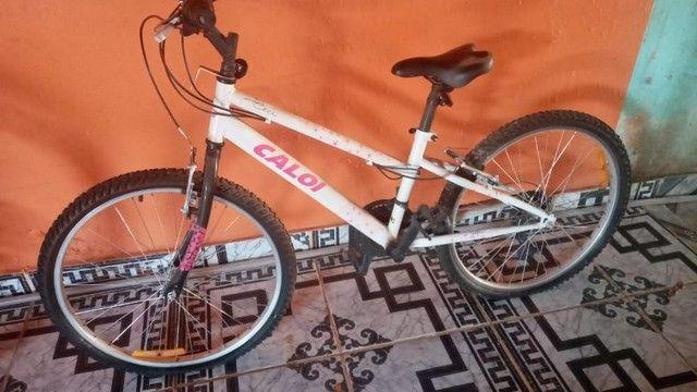 Bicicleta calou ceci aro 24
