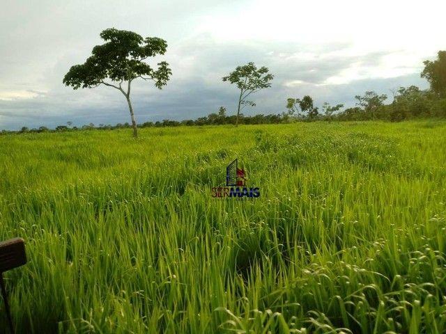 Fazenda à venda por R$ 9.234.000,00 - Zona Rural - Alta Floresta D'Oeste/RO - Foto 3