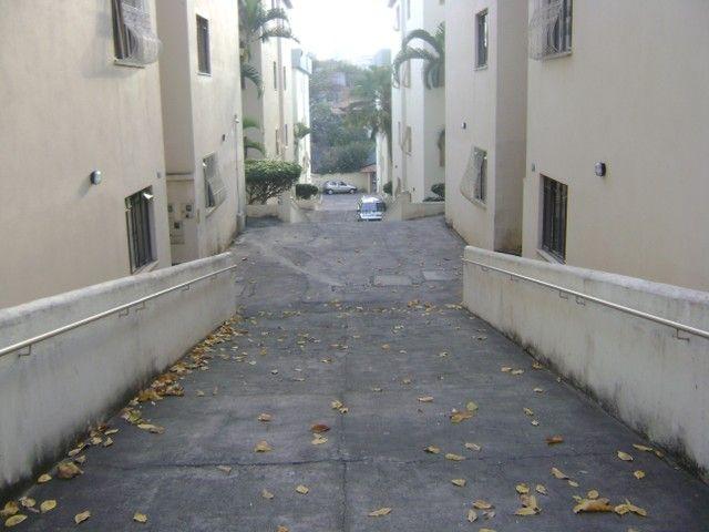BELO HORIZONTE - Padrão - Santa Amelia - Foto 16