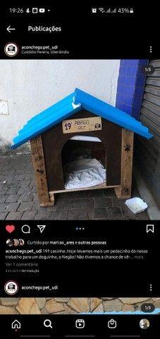 Casinhas de Cachorro Personalizadas