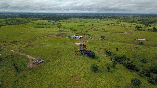 Fazenda com à venda, por R$ 14.000.000 - Centro - Alta Floresta D'Oeste/RO