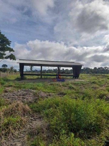 Sítio à venda por R$ 1.680.000 - Área Rural de Porto Velho - Porto Velho/RO - Foto 11
