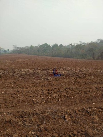 Fazenda à venda por R$ 9.234.000,00 - Zona Rural - Alta Floresta D'Oeste/RO - Foto 8