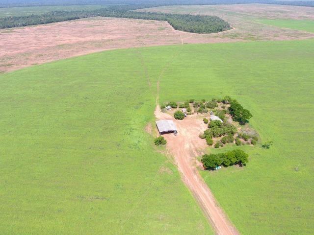 Fazenda 15000 ha 150 Km Sorriso MT - Foto 2
