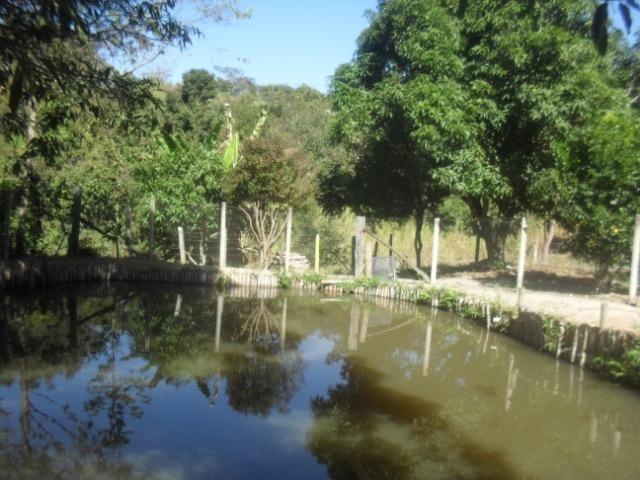 Fazenda com 57 hectares em Carmopolis de Minas - Foto 13