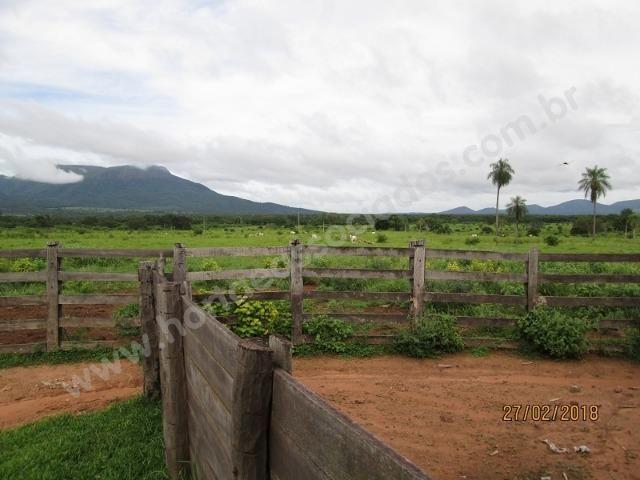 Fazenda com 881 hectares em Corumbá-MS para agricultura e pecuária - Foto 12