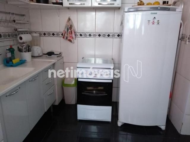 Apartamento à venda com 3 dormitórios em Padre eustáquio, Belo horizonte cod:712068 - Foto 5