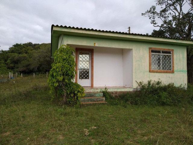 Velleda oferece sitio de 2 ha escriturado com casa e galpão, 1 km da RS040 - Foto 12