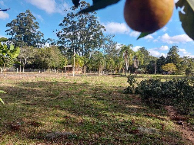 Velleda oferece B.A.R.B.A.D.A 2 hectares com cancha de futebol e frutíferas - Foto 12