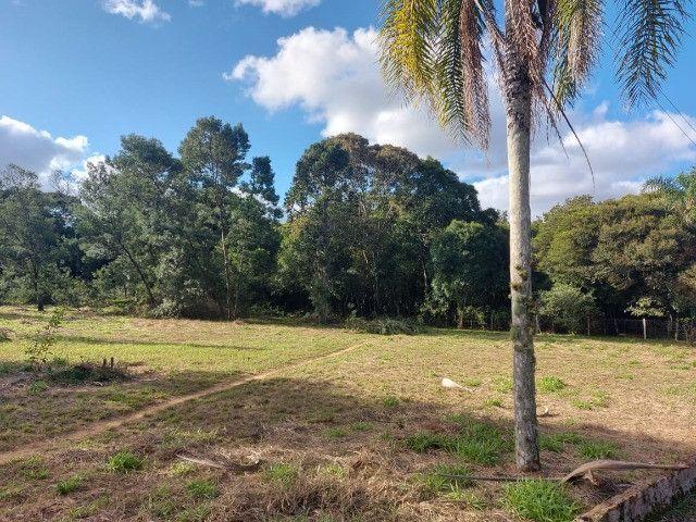 Velleda oferece B.A.R.B.A.D.A 2 hectares com cancha de futebol e frutíferas - Foto 8