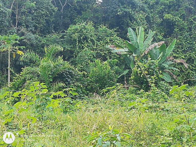 Vendo terreno em Belterra, Ótima localização - Foto 3