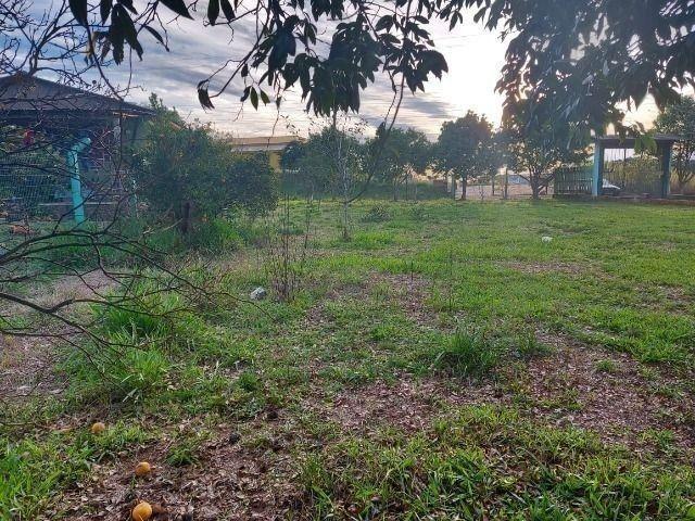 Velleda oferece, sitio 2500 m² com açude, antes do pedágio de viamão - Foto 3