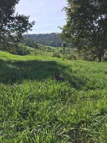 Sítio à venda, por R$ 2.150.000 - Centro - Alta Floresta D'Oeste/RO - Foto 3