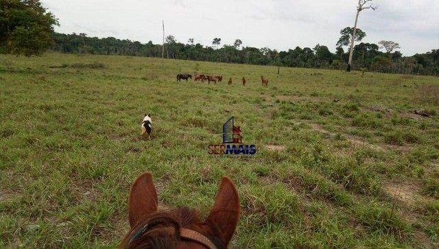 Fazenda à venda, por R$ 10.925.000 - Área Rural de Porto Velho - Porto Velho/RO - Foto 10