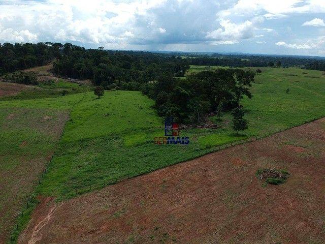 Sítio à venda, por R$ 3.500.000 - Zona Rural - Presidente Médici/RO - Foto 16