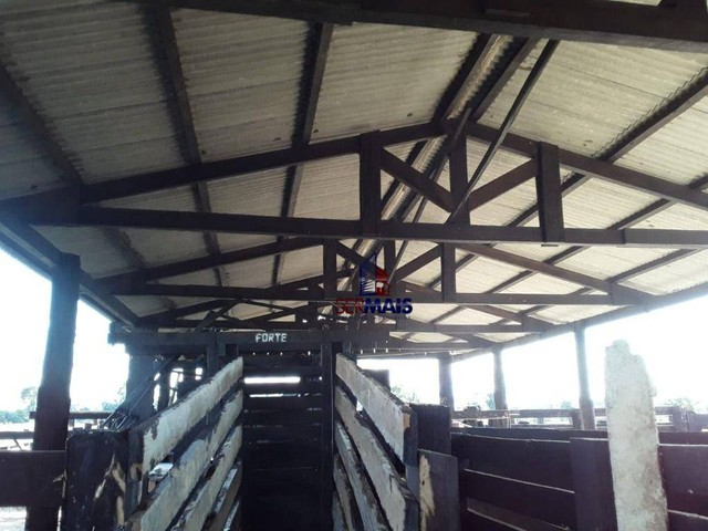 Sítio à venda por R$ 1.680.000 - Área Rural de Porto Velho - Porto Velho/RO - Foto 13