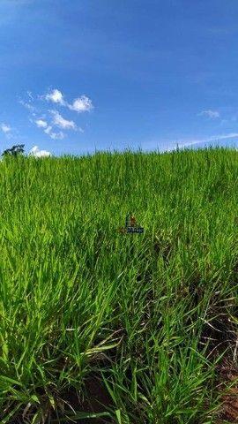 Sítio à venda, 508200 m² por R$ 670.000 - Zona Rural - Vale do Anari/RO - Foto 14