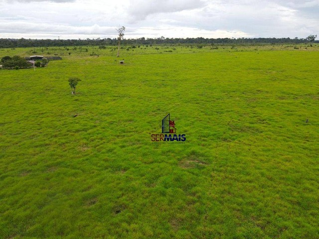 Fazenda à venda, por R$ 40.000.000 - Área Rural de Porto Velho - Porto Velho/RO - Foto 6