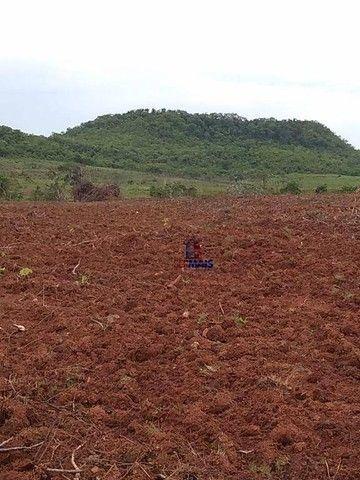 Fazenda à venda por R$ 9.234.000,00 - Zona Rural - Alta Floresta D'Oeste/RO - Foto 13