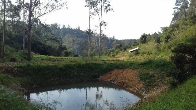 Sítio com piscina natural 4 Hect. lugar fantástico,