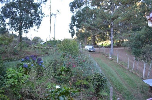 Sítio rural à venda, vale dos pinheiros, gramado. - Foto 16
