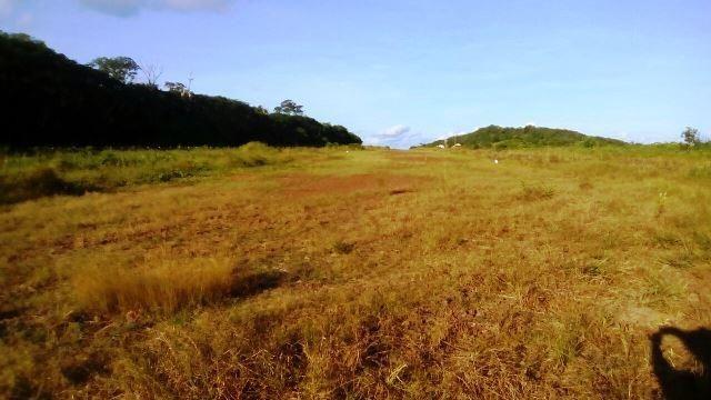 Fazenda 7900 ha Alta Floresta MT - Foto 7