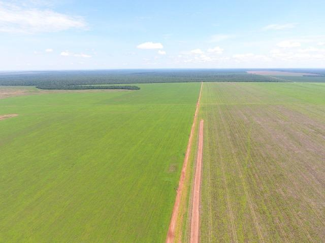 Fazenda 15000 ha 150 Km Sorriso MT - Foto 3
