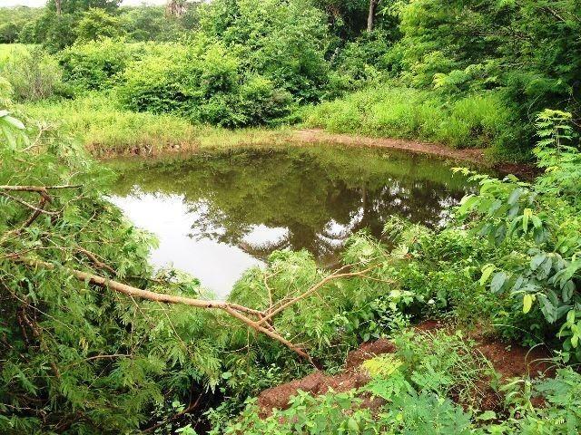 Fazenda 950 ha Rosário Oeste MT - Foto 10